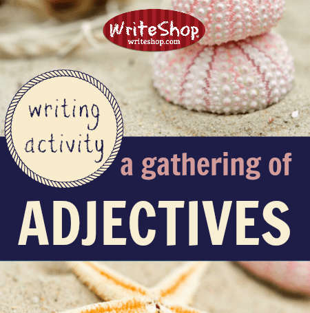A gathering of adjectives writing activity