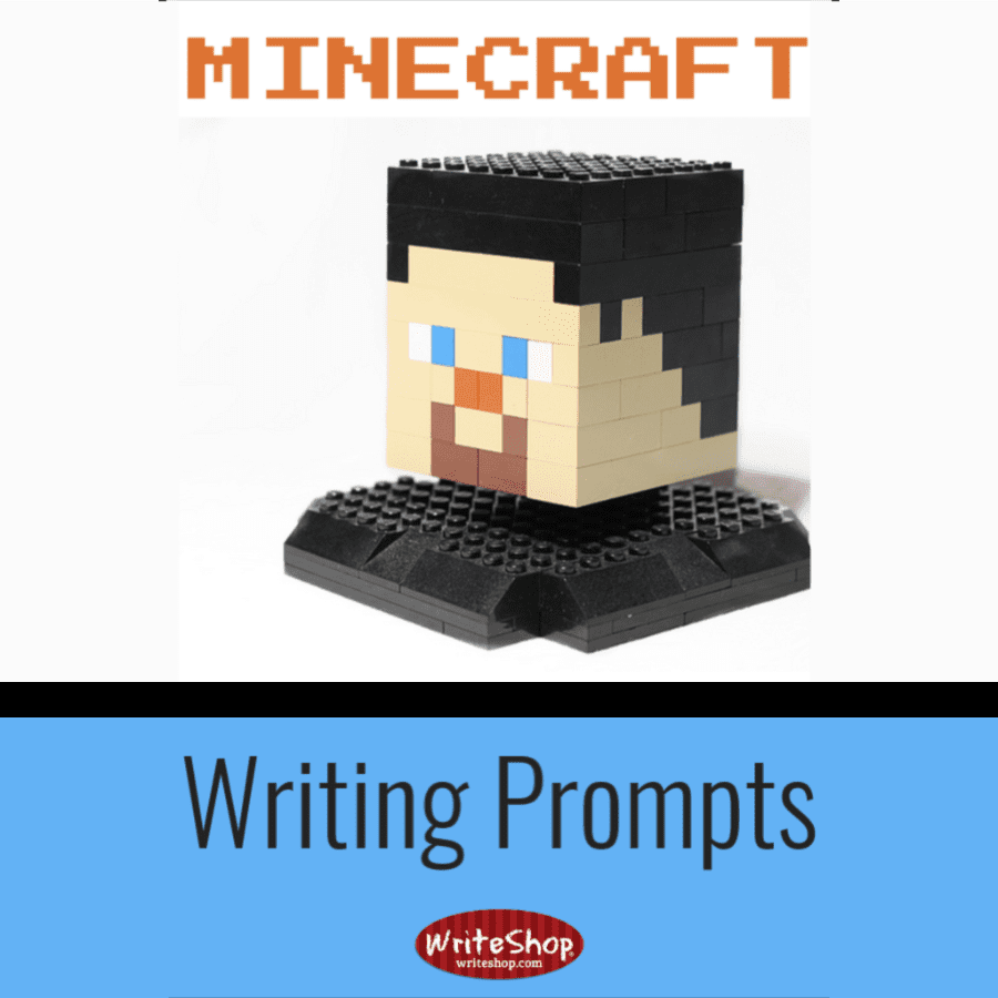 Put an educational spin on the kids' favorite sandbox game with these Minecraft writing prompts.